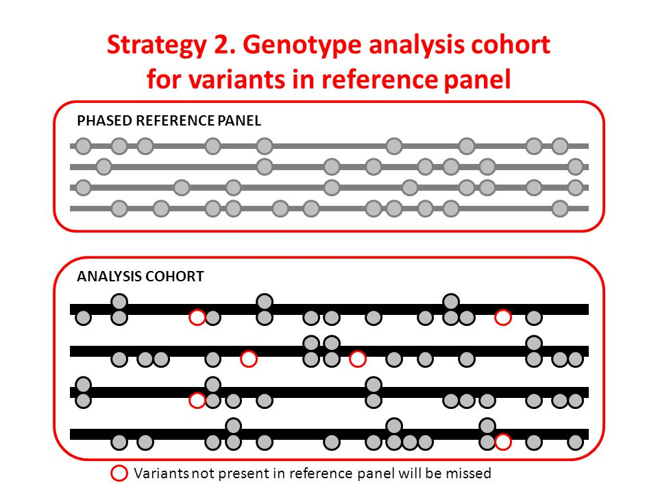 Strategy 2. Genotype analysis cohort for variants in reference panel PHASED REFERENCE PANEL ANALYSIS COHORT Variants not present in reference panel wi