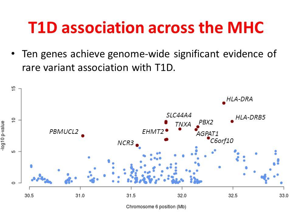 T1D association across the MHC PBMUCL2 NCR3 EHMT2 SLC44A4 TNXA PBX2 AGPAT1 C6orf10 HLA-DRB5 HLA-DRA Ten genes achieve genome-wide significant evidence of rare variant association with T1D.