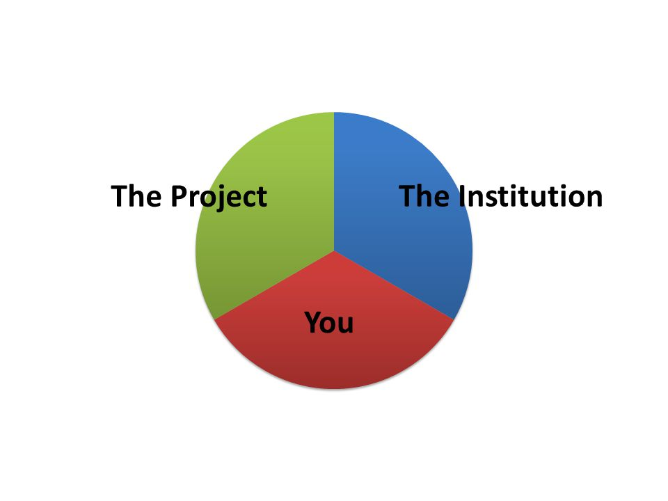 The Institution The Project You