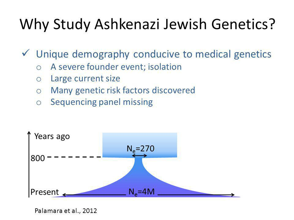 Why Study Ashkenazi Jewish Genetics? Unique demography conducive to medical genetics o A severe founder event; isolation o Large current size o Many g