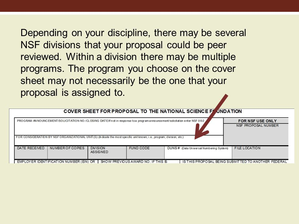 Depending on your discipline, there may be several NSF divisions that your proposal could be peer reviewed.