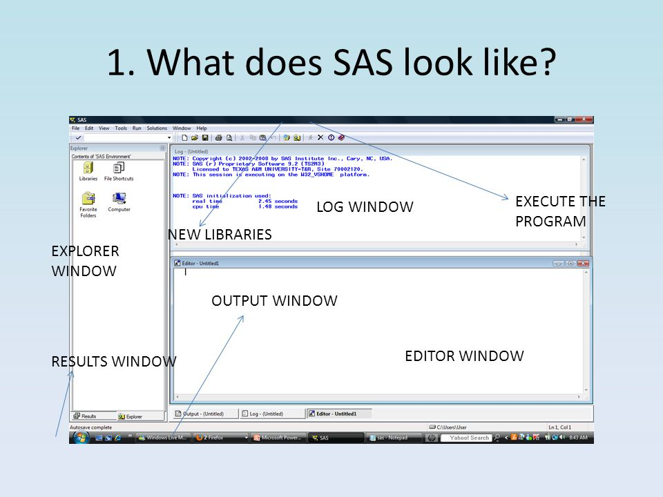 1.What does SAS look like.