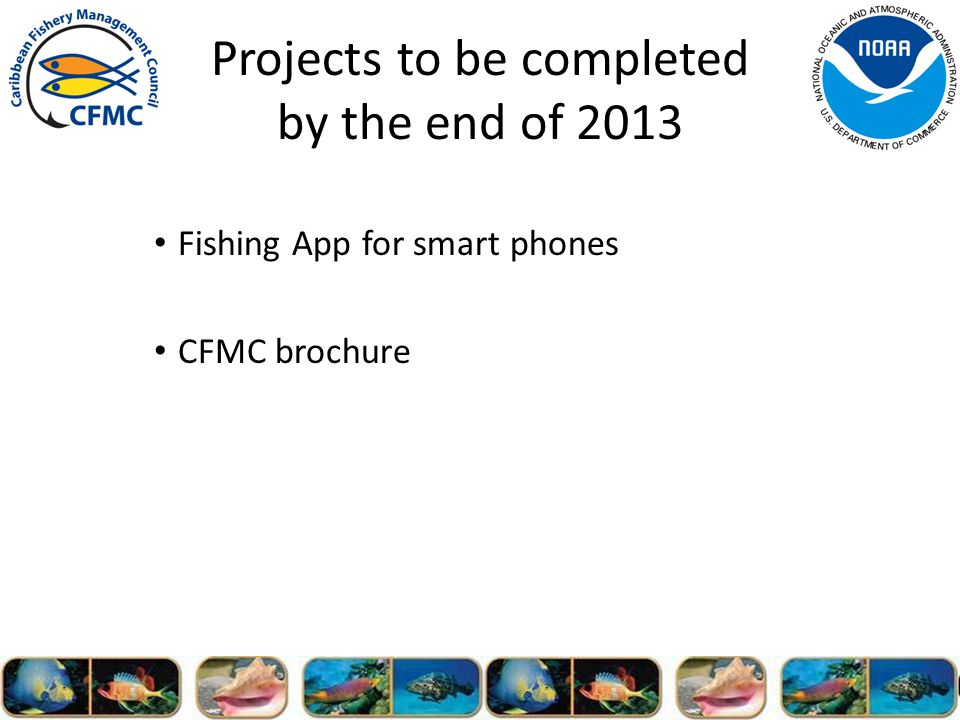 Projects to be completed by the end of 2013 Fishing App for smart phones CFMC brochure