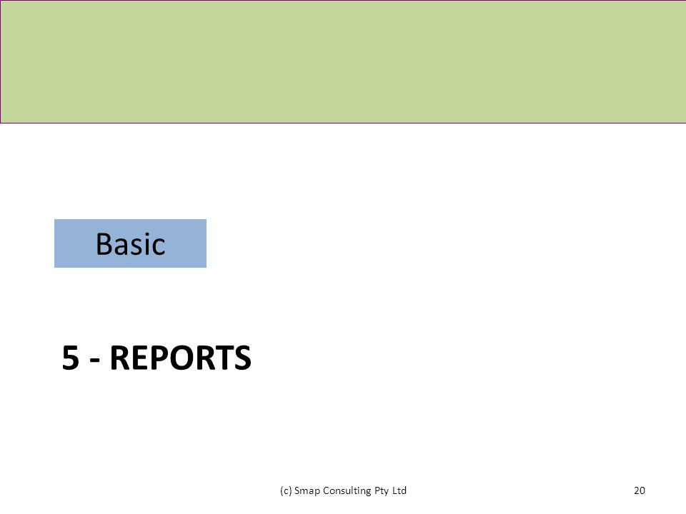 5 - REPORTS (c) Smap Consulting Pty Ltd20 Basic