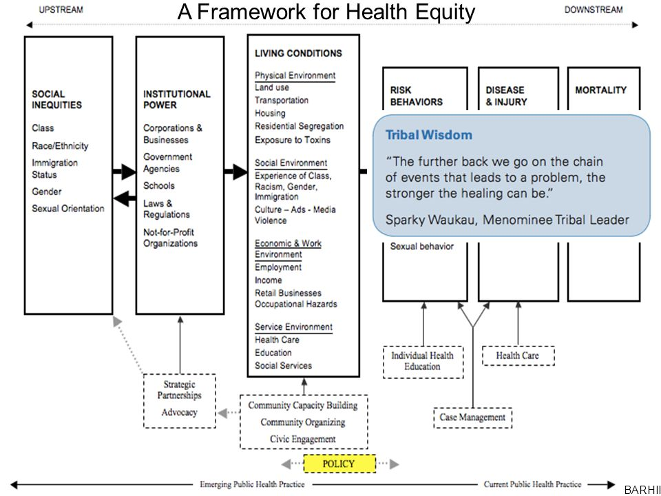 A Framework for Health Equity BARHII
