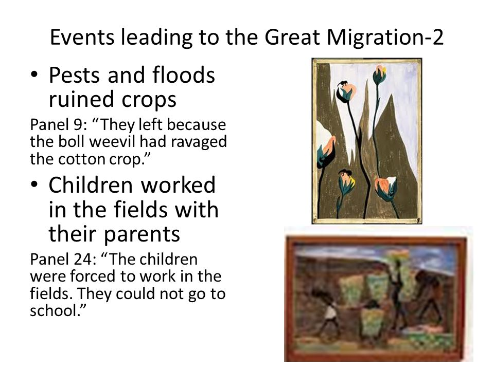 Events leading to the Great Migration-2 Pests and floods ruined crops Panel 9: They left because the boll weevil had ravaged the cotton crop. Children