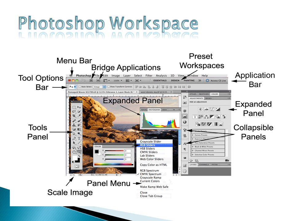 Panels display many options, and they help modify and control information about your image.