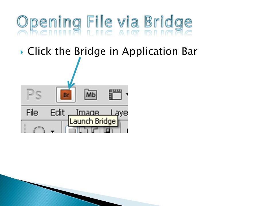 Adobe Bridge Window Folders tab Resizing slider