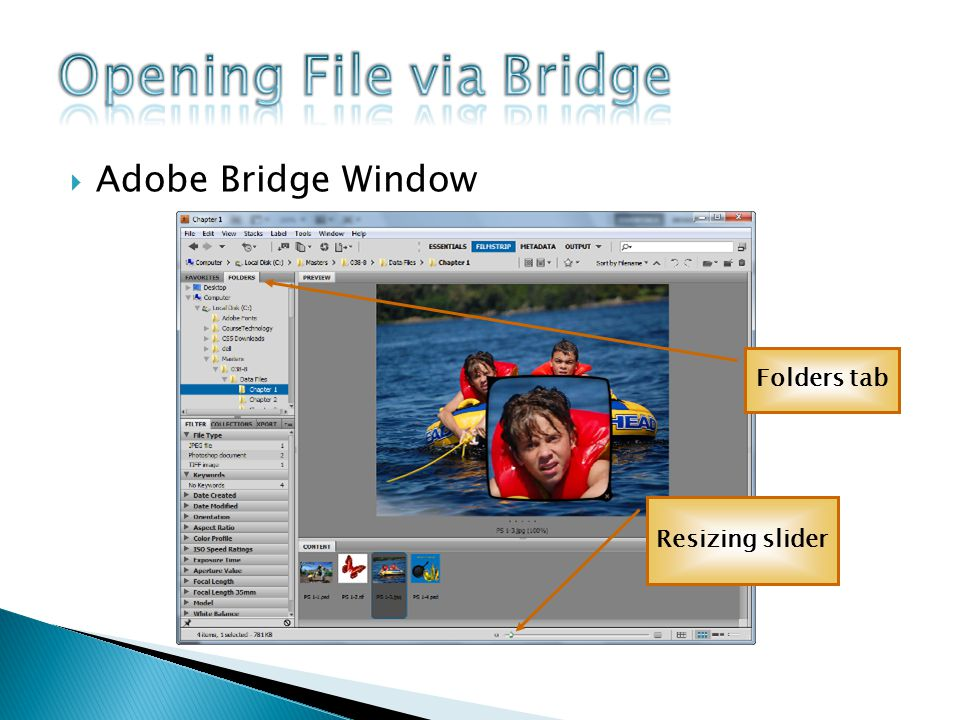 Adobe Bridge Window Folders tab Resizing slider