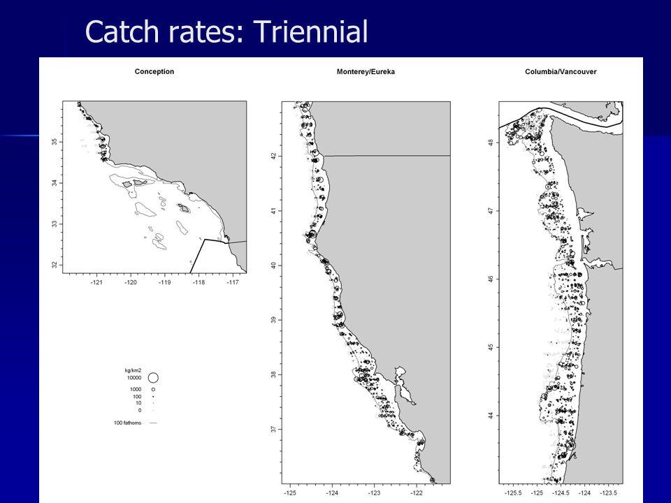 Catch rates: Triennial