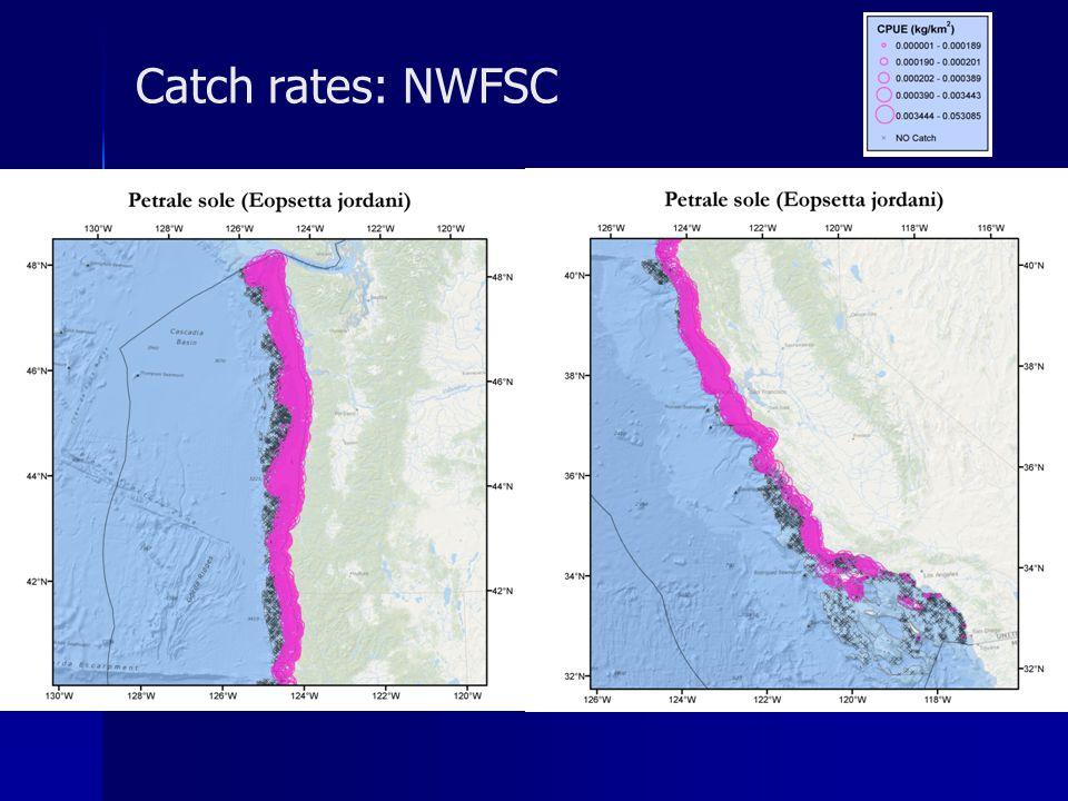 Catch rates: NWFSC