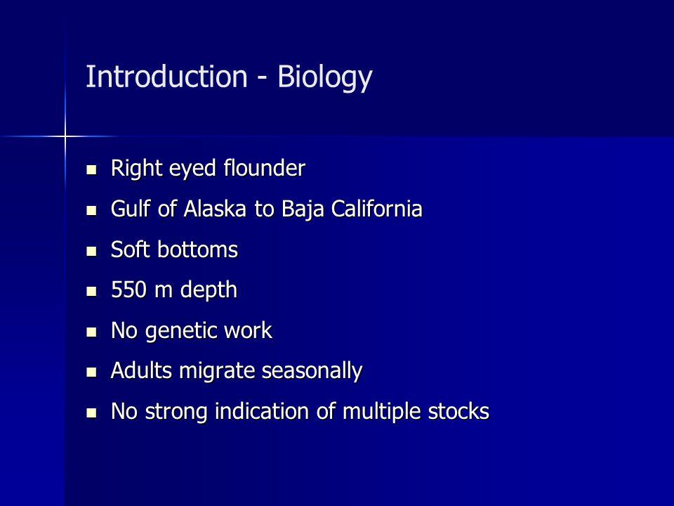 Introduction - Biology Right eyed flounder Right eyed flounder Gulf of Alaska to Baja California Gulf of Alaska to Baja California Soft bottoms Soft b