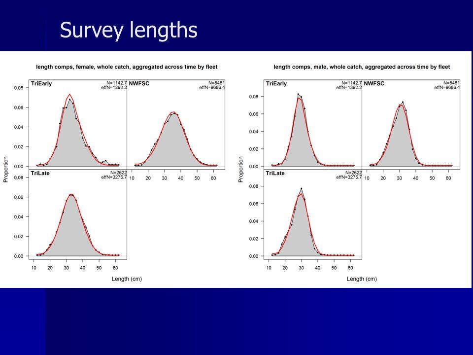 Survey lengths