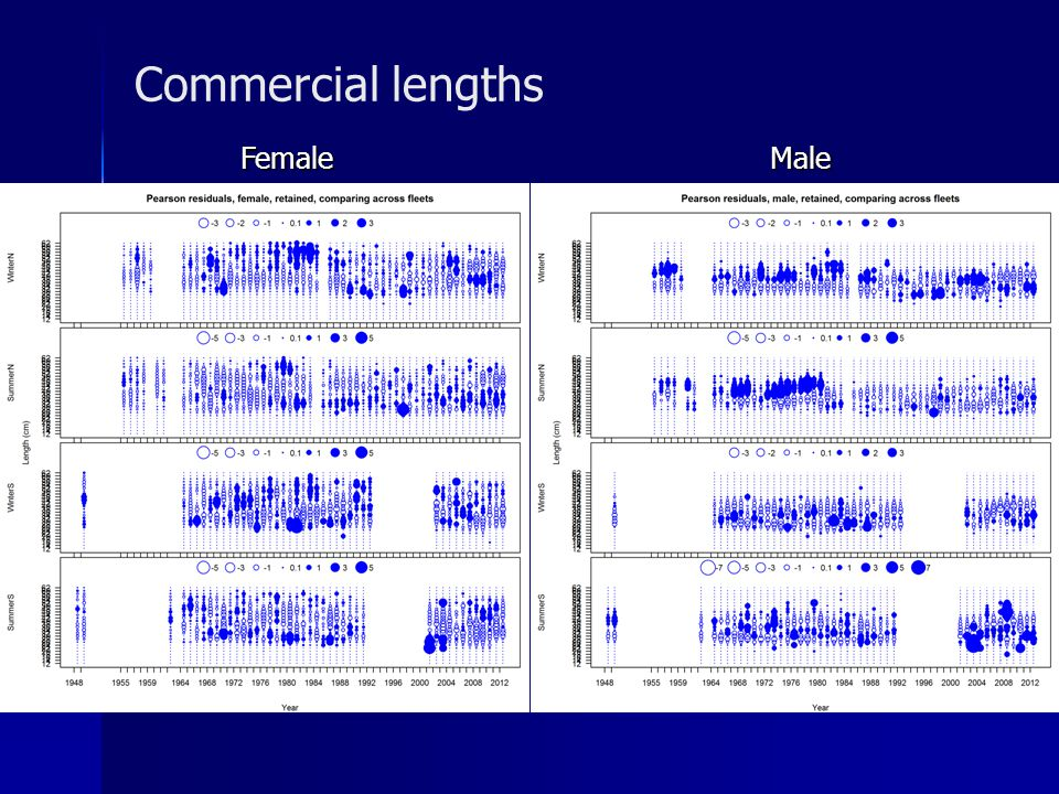 Commercial lengths Female Male