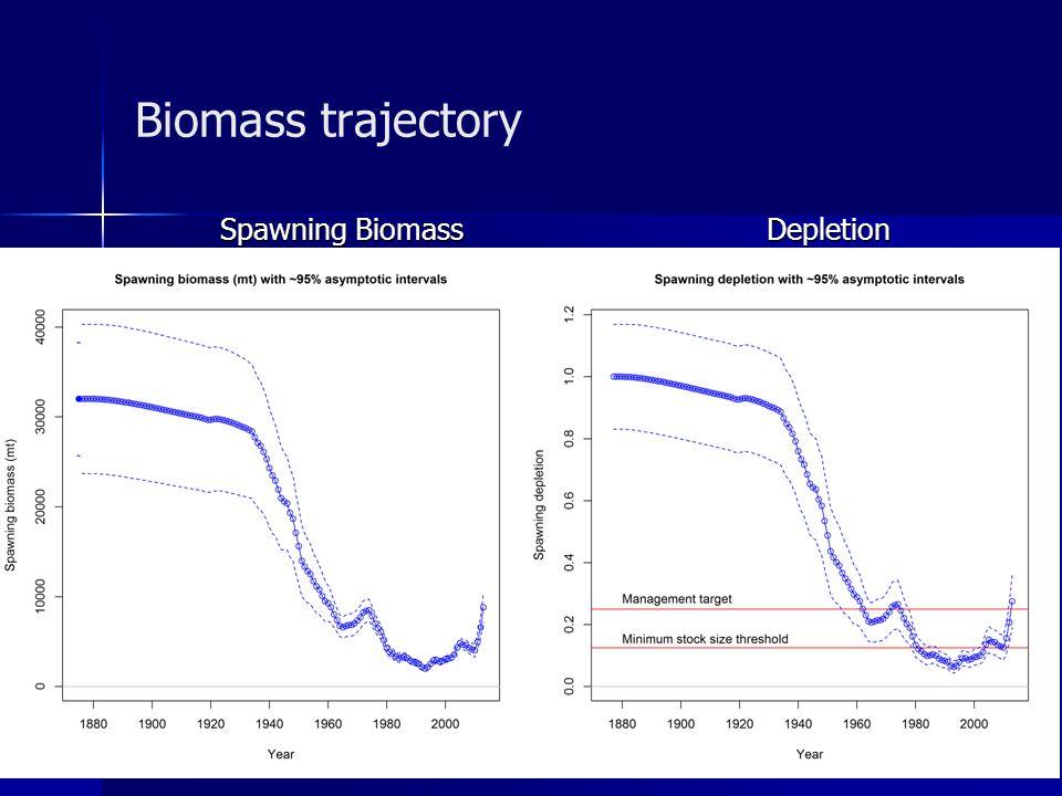 Biomass trajectory Spawning Biomass Depletion Spawning Biomass Depletion