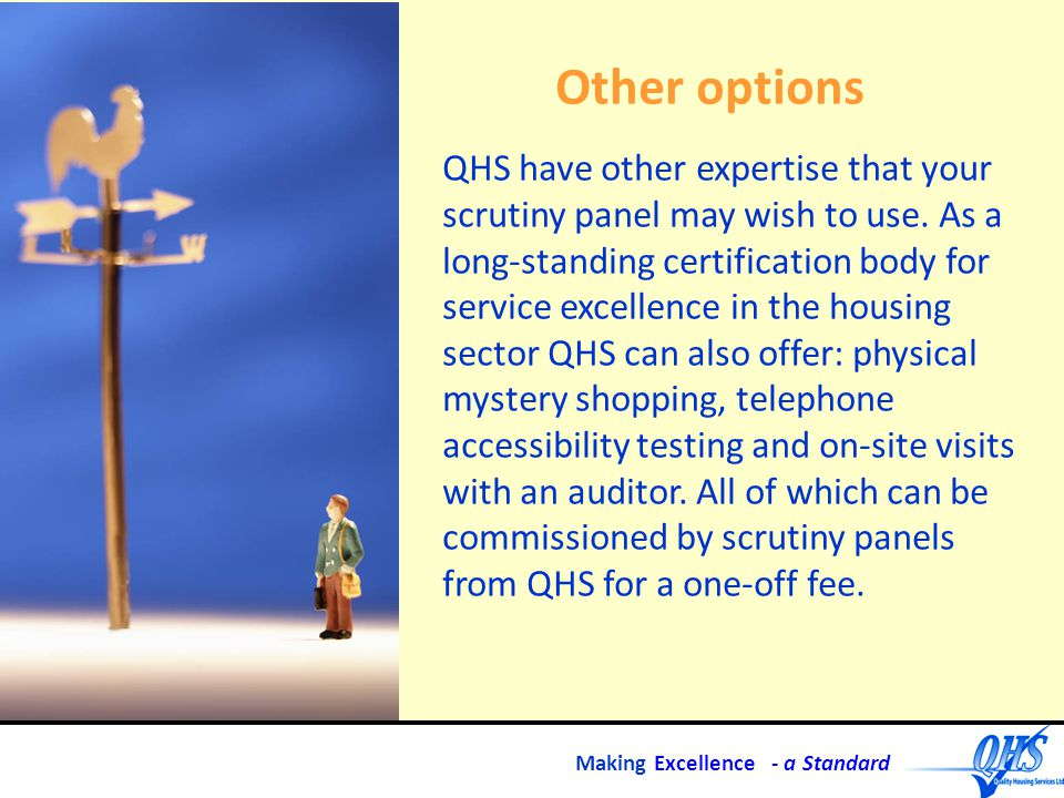 Making Excellence - a Standard Other options QHS have other expertise that your scrutiny panel may wish to use.