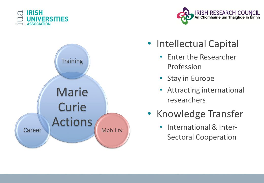 Marie Curie Actions Training Mobility Career Intellectual Capital Enter the Researcher Profession Stay in Europe Attracting international researchers