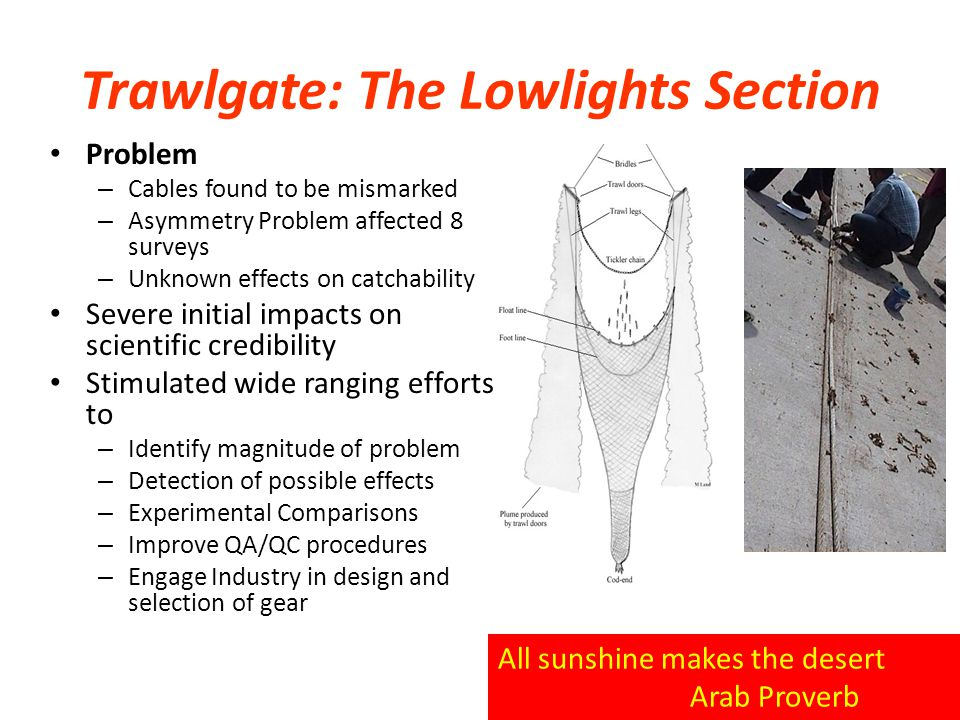 Trawlgate: The Lowlights Section All sunshine makes the desert Arab Proverb Problem – Cables found to be mismarked – Asymmetry Problem affected 8 surveys – Unknown effects on catchability Severe initial impacts on scientific credibility Stimulated wide ranging efforts to – Identify magnitude of problem – Detection of possible effects – Experimental Comparisons – Improve QA/QC procedures – Engage Industry in design and selection of gear