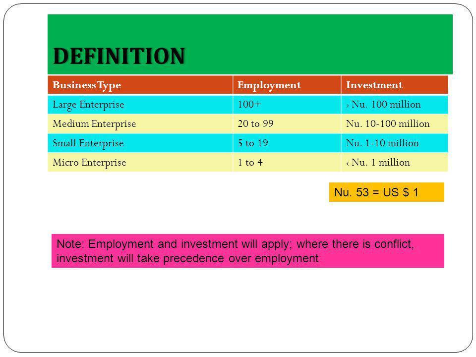 DEFINITION Business TypeEmploymentInvestment Large Enterprise100+ Nu.
