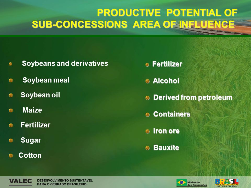 Soybeans and derivatives Soybean meal Soybean oil Maize Fertilizer Sugar Cotton PRODUCTIVE POTENTIAL OF SUB-CONCESSIONS AREA OF INFLUENCE PRODUCTIVE POTENTIAL OF SUB-CONCESSIONS AREA OF INFLUENCE Fertilizer Fertilizer Alcohol Alcohol Derived from petroleum Derived from petroleum Containers Containers Iron ore Iron ore Bauxite Bauxite