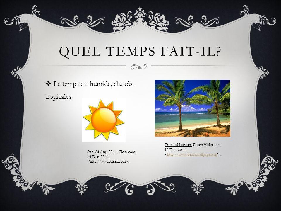Le temps est humide, chauds, tropicales QUEL TEMPS FAIT-IL.