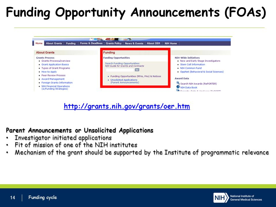 Funding Opportunity Announcements (FOAs) 14 http://grants.nih.gov/grants/oer.htm Parent Announcements or Unsolicited Applications Investigator initiated applications Investigator initiated applications Fit of mission of one of the NIH institutes Fit of mission of one of the NIH institutes Mechanism of the grant should be supported by the Institute of programmatic relevance Mechanism of the grant should be supported by the Institute of programmatic relevance Funding cycle