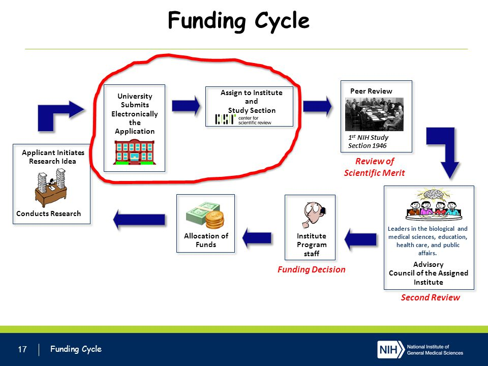 Funding Cycle 17 Applicant Initiates Research Idea University Submits Electronically the Application Assign to Institute and Study Section Peer Review Leaders in the biological and medical sciences, education, health care, and public affairs.
