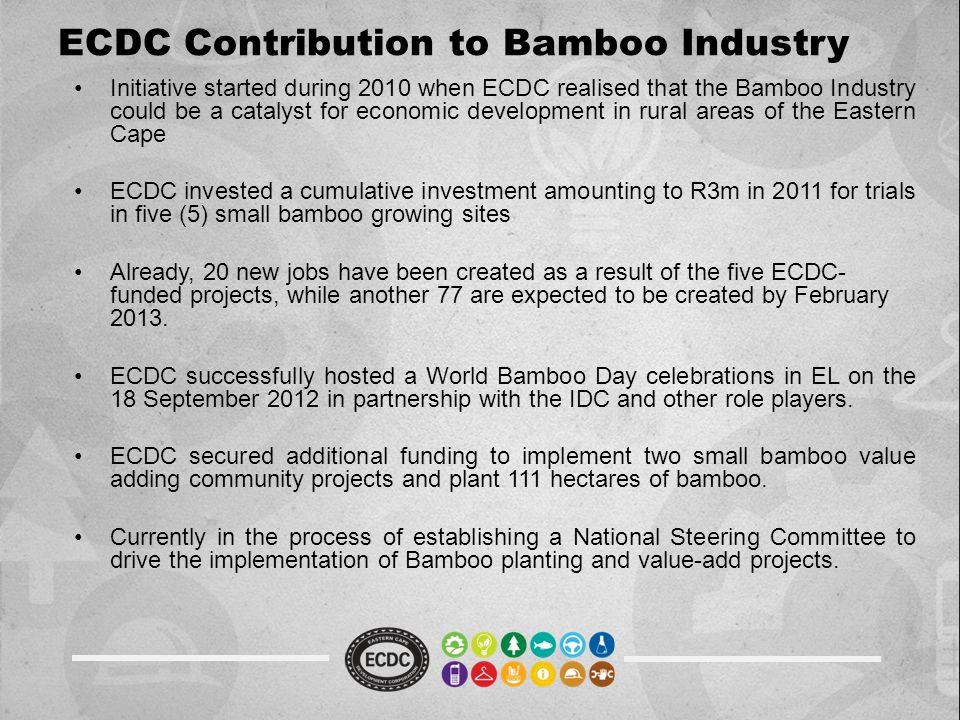 ECDC Contribution to Bamboo Industry Initiative started during 2010 when ECDC realised that the Bamboo Industry could be a catalyst for economic development in rural areas of the Eastern Cape ECDC invested a cumulative investment amounting to R3m in 2011 for trials in five (5) small bamboo growing sites Already, 20 new jobs have been created as a result of the five ECDC- funded projects, while another 77 are expected to be created by February 2013.