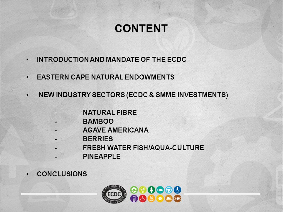 CONTENT INTRODUCTION AND MANDATE OF THE ECDC EASTERN CAPE NATURAL ENDOWMENTS NEW INDUSTRY SECTORS (ECDC & SMME INVESTMENTS) -NATURAL FIBRE -BAMBOO -AGAVE AMERICANA -BERRIES -FRESH WATER FISH/AQUA-CULTURE -PINEAPPLE CONCLUSIONS