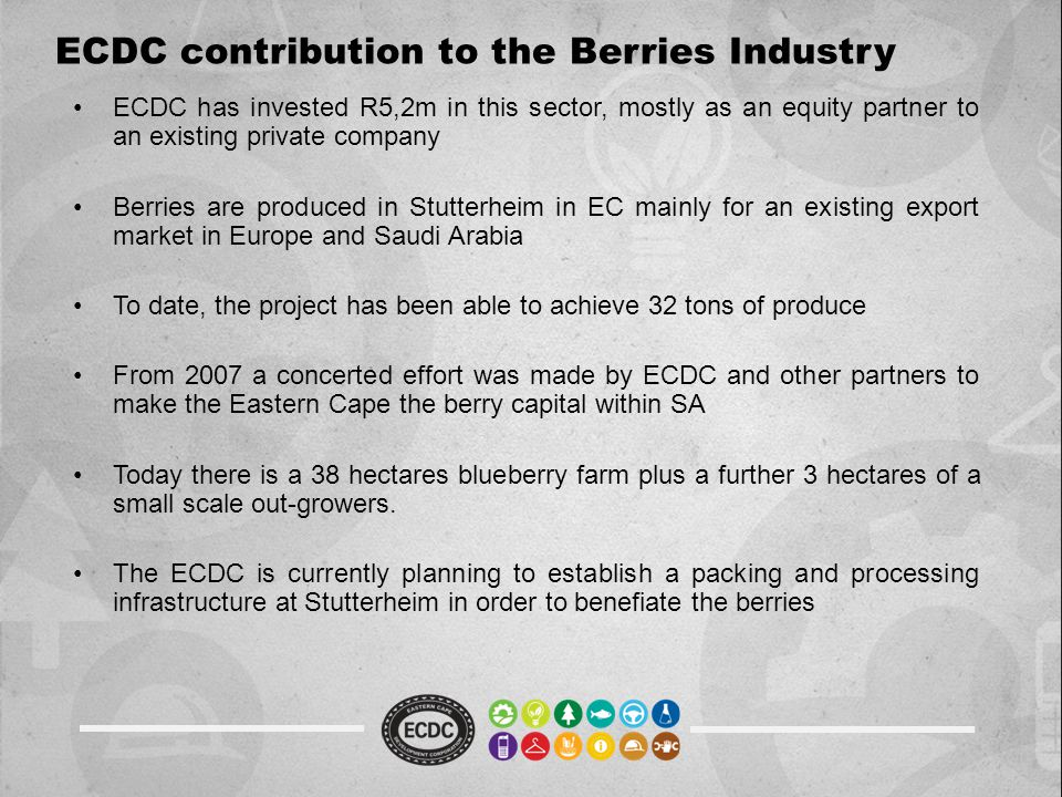 ECDC contribution to the Berries Industry ECDC has invested R5,2m in this sector, mostly as an equity partner to an existing private company Berries are produced in Stutterheim in EC mainly for an existing export market in Europe and Saudi Arabia To date, the project has been able to achieve 32 tons of produce From 2007 a concerted effort was made by ECDC and other partners to make the Eastern Cape the berry capital within SA Today there is a 38 hectares blueberry farm plus a further 3 hectares of a small scale out-growers.