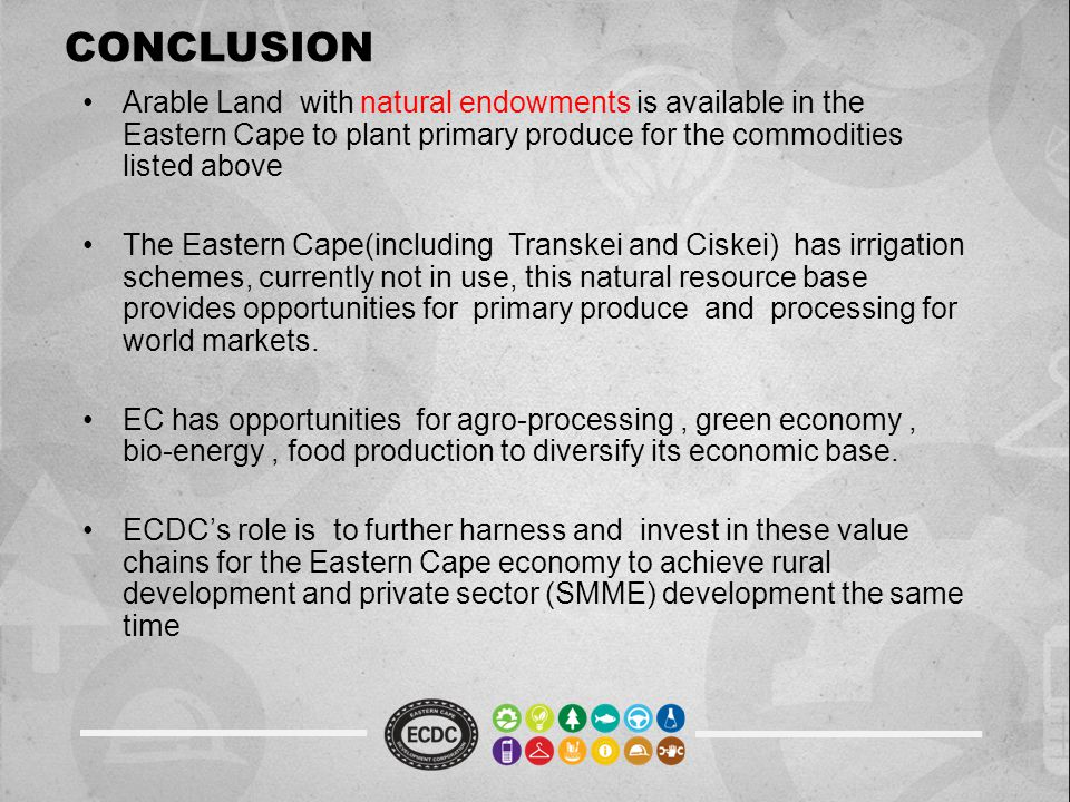CONCLUSION Arable Land with natural endowments is available in the Eastern Cape to plant primary produce for the commodities listed above The Eastern Cape(including Transkei and Ciskei) has irrigation schemes, currently not in use, this natural resource base provides opportunities for primary produce and processing for world markets.