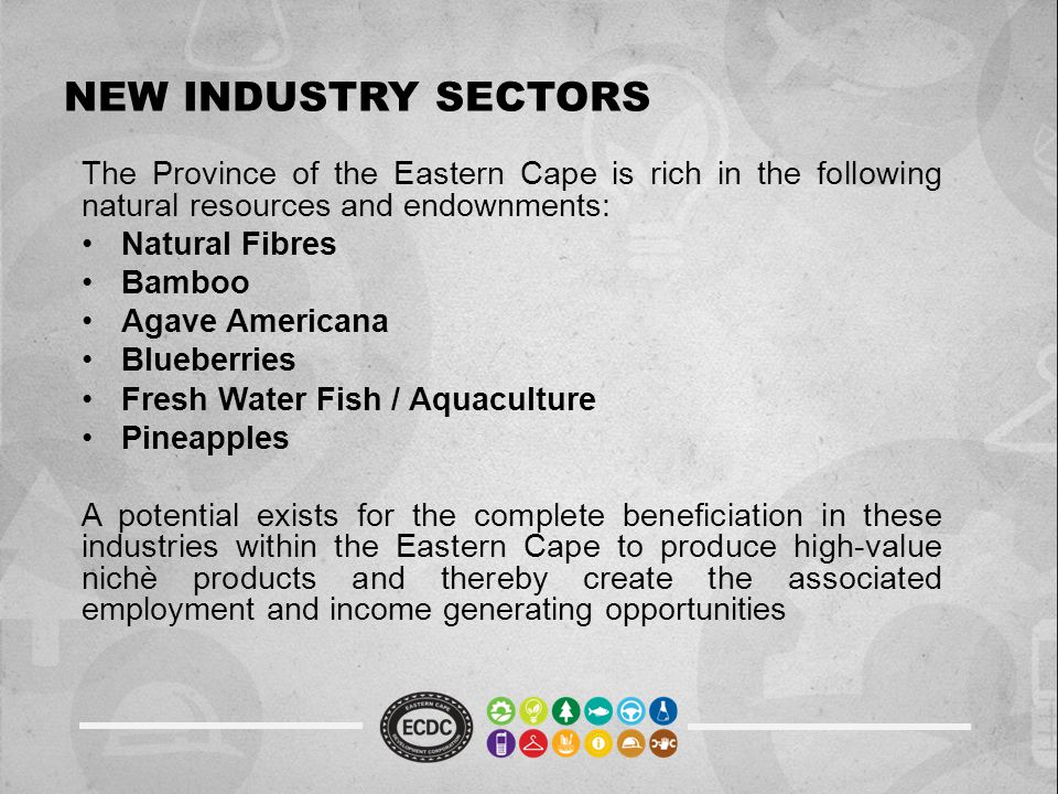 NEW INDUSTRY SECTORS The Province of the Eastern Cape is rich in the following natural resources and endownments: Natural Fibres Bamboo Agave American