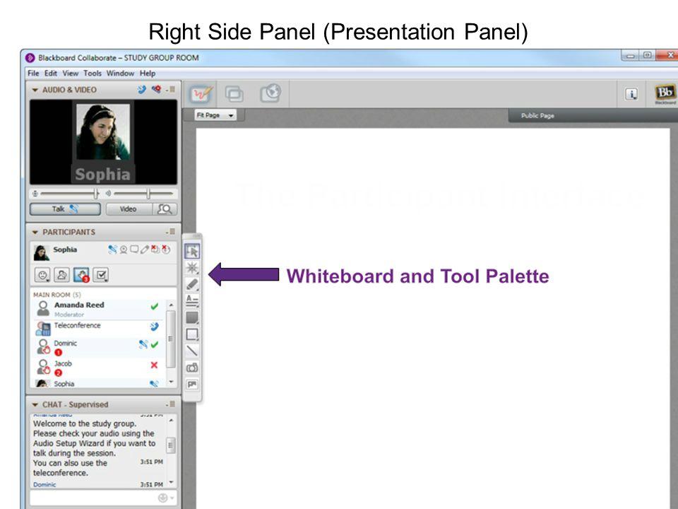 Right Side Panel (Presentation Panel)