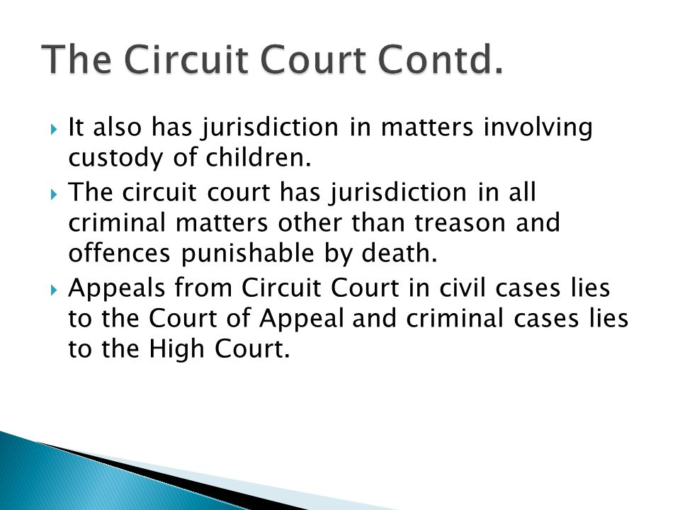 It also has jurisdiction in matters involving custody of children. The circuit court has jurisdiction in all criminal matters other than treason and o