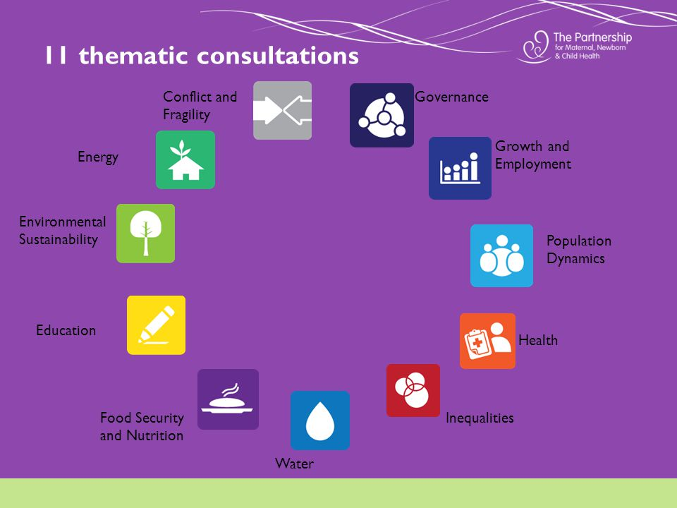 11 thematic consultations Governance Growth and Employment Population Dynamics Health Environmental Sustainability Education Water Food Security and Nutrition Inequalities Conflict and Fragility Energy