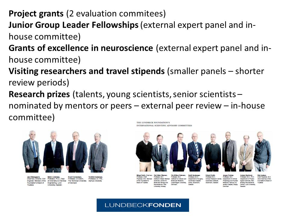 Project grants (2 evaluation commitees) Junior Group Leader Fellowships (external expert panel and in- house committee) Grants of excellence in neuroscience (external expert panel and in- house committee) Visiting researchers and travel stipends (smaller panels – shorter review periods) Research prizes (talents, young scientists, senior scientists – nominated by mentors or peers – external peer review – in-house committee)