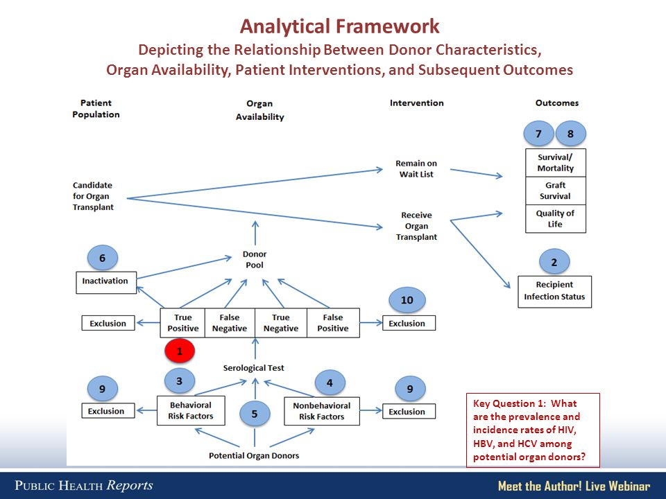 Analytical Framework Depicting the Relationship Between Donor Characteristics, Organ Availability, Patient Interventions, and Subsequent Outcomes Key Question 1: What are the prevalence and incidence rates of HIV, HBV, and HCV among potential organ donors