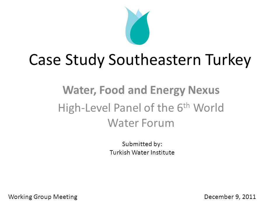 Case Study Southeastern Turkey Water, Food and Energy Nexus High-Level Panel of the 6 th World Water Forum Working Group Meeting December 9, 2011 Submitted by: Turkish Water Institute