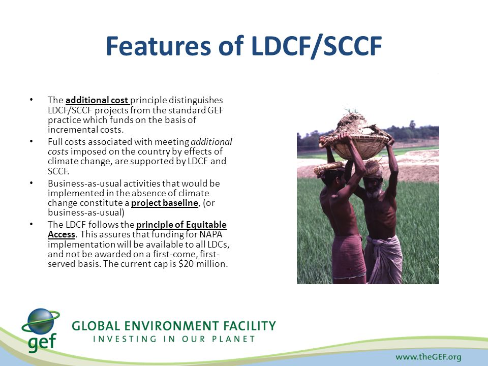 Features of LDCF/SCCF The additional cost principle distinguishes LDCF/SCCF projects from the standard GEF practice which funds on the basis of incremental costs.