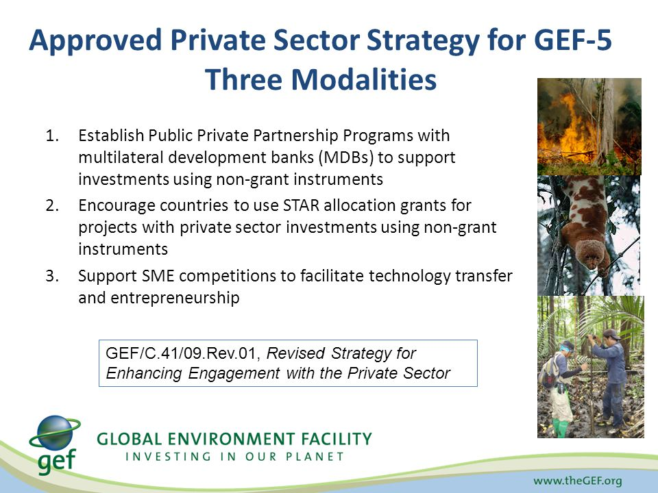 Approved Private Sector Strategy for GEF-5 Three Modalities 1.Establish Public Private Partnership Programs with multilateral development banks (MDBs) to support investments using non-grant instruments 2.Encourage countries to use STAR allocation grants for projects with private sector investments using non-grant instruments 3.Support SME competitions to facilitate technology transfer and entrepreneurship GEF/C.41/09.Rev.01, Revised Strategy for Enhancing Engagement with the Private Sector