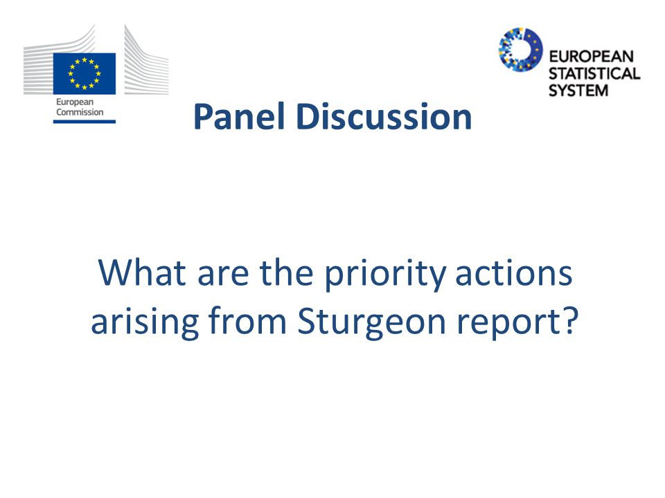 Panel Discussion The Sturgeon Report has identified a number of gaps.