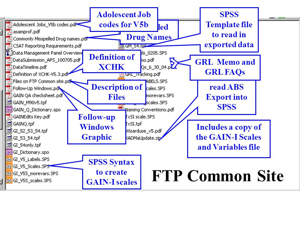 FTP Common Site Follow-up Windows Graphic Instructions to read ABS Export into SPSS SPSS Syntax to create GAIN-I scales Definition of XCHK Misspelled Drug Names Adolescent Job codes for V5b GRL Memo and GRL FAQs Description of Files SPSS Template file to read in exported data Includes a copy of the GAIN-I Scales and Variables file