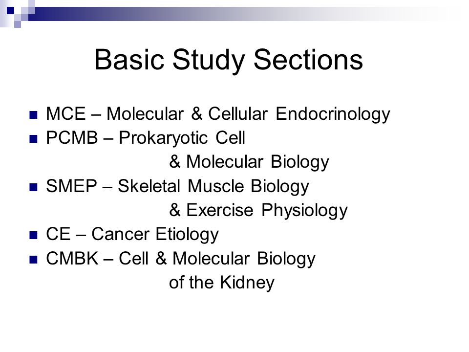 Basic Study Sections MCE – Molecular & Cellular Endocrinology PCMB – Prokaryotic Cell & Molecular Biology SMEP – Skeletal Muscle Biology & Exercise Physiology CE – Cancer Etiology CMBK – Cell & Molecular Biology of the Kidney