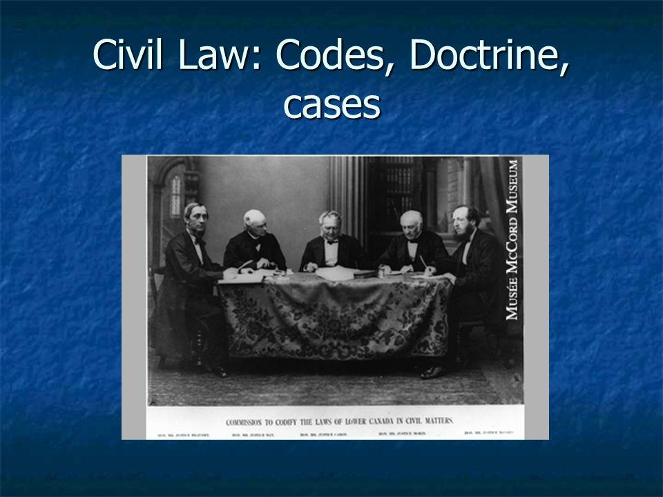 Civil Law: Codes, Doctrine, cases