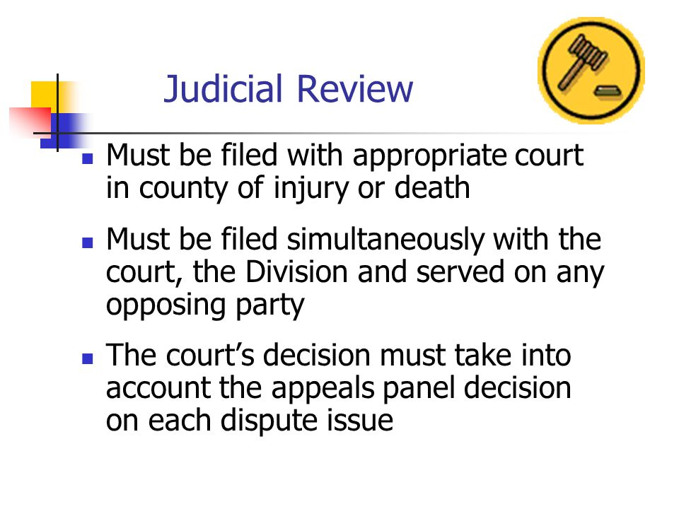 Judicial Review Must be filed with appropriate court in county of injury or death Must be filed simultaneously with the court, the Division and served on any opposing party The courts decision must take into account the appeals panel decision on each dispute issue