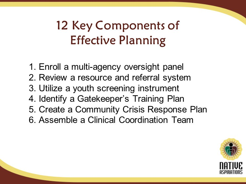 12 Key Components of Effective Planning 1. Enroll a multi-agency oversight panel 2.