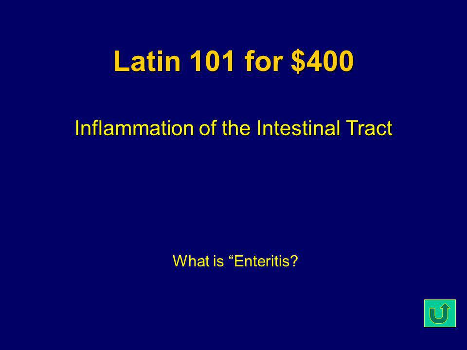 Latin 101 for $300 Cold-Blooded What is Ectothermic?