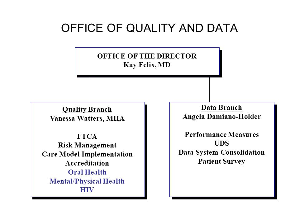 OFFICE OF QUALITY AND DATA OFFICE OF THE DIRECTOR Kay Felix, MD OFFICE OF THE DIRECTOR Kay Felix, MD Data Branch Angela Damiano-Holder Performance Mea