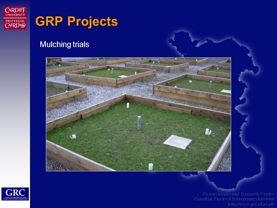 Geoenvironmental Research Centre Canolfan Ymchwil Ddaearamgylcheddol http://www.grc.cf.ac.uk GRP Projects Mulching trials