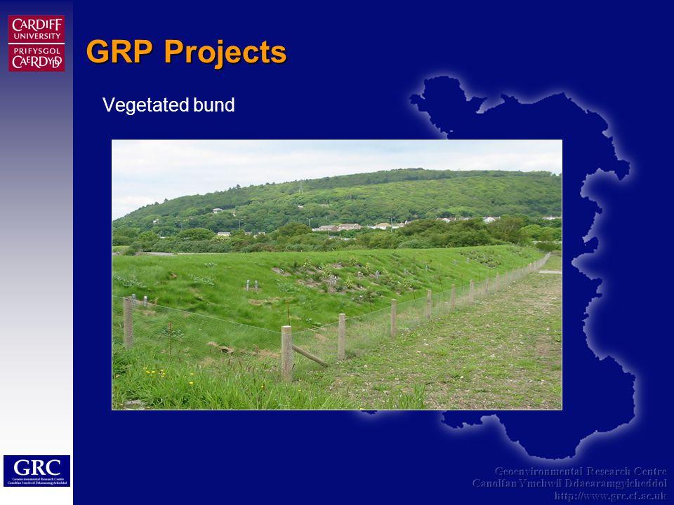 Geoenvironmental Research Centre Canolfan Ymchwil Ddaearamgylcheddol http://www.grc.cf.ac.uk GRP Projects Vegetated bund
